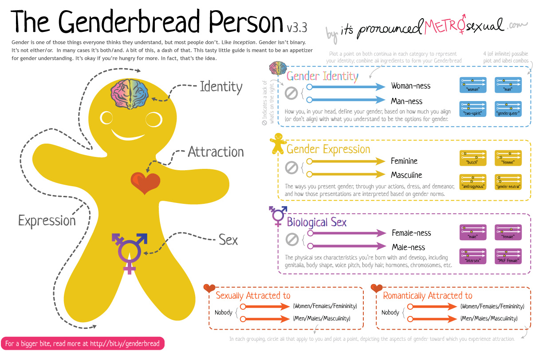 Plaatje van de Genderbread person, een mensvormige koek, met schalen van gender geslacht en seksualiteit. BInair helaas hier